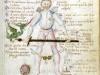 Codex.1324, 15r (1482-1487)