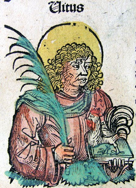 Photo St. Vitus with the symbol of resurrection, a rooster. According to legend he was boiled alive together with a rooster. The Patron Saint of Bohemia and the Fencing Guild Die Freifechter was St. Vitus. He is holding a palm branch in his right hand, which symbolizes victory and martyrdom. From the Nuremberg Chronicle, 1493.