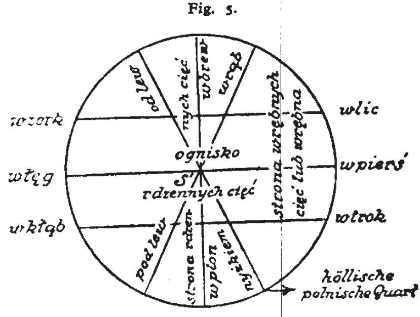 Michał Starzewski cutting diagram