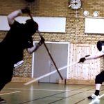 free-fencing-stangen-2014-03